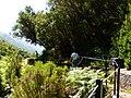 Levada 25 Fontes, Madeira, Portugal, June-July 2011 - panoramio (18).jpg