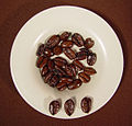 Liberica coffee beans, roasted.jpg