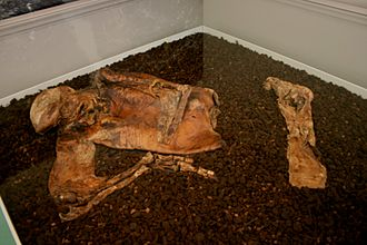 Lindow Man - Lindow Man on display at the British Museum in June 2010