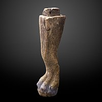 Lion leg shaped furniture element-MAHG 023457-IMG 1751-gradient.jpg