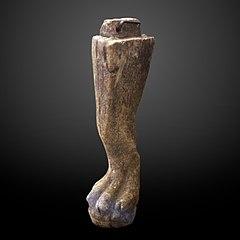Lion leg shaped furniture element-MAHG 023457