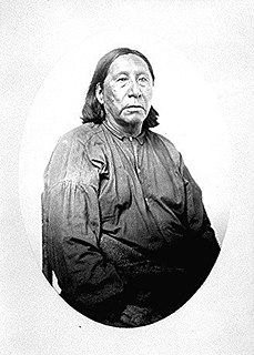 Little Raven (Arapaho leader) Southern Arapaho chief