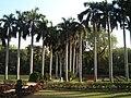 Lodhi Garden - Lanscape 4.jpg
