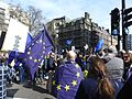 London March Euro Demo Park Lane 2914.jpg