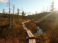 Lonesome Lake Trail, NH - panoramio.jpg