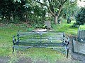 Long shot of the bench (OpenBenches 2305-1).jpg