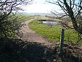 Longcourse Lane - View of Newly Created Footpath - geograph.org.uk - 688048.jpg