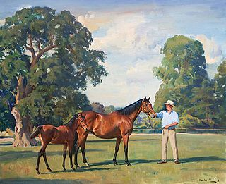 Look Here (horse) British Thoroughbred racehorse