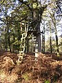 Lookout post in the Islands Thorns Inclosure, New Forest - geograph.org.uk - 81147.jpg