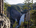 Lower Yellowstone Falls, Yellowstone National Park (7742959578).jpg