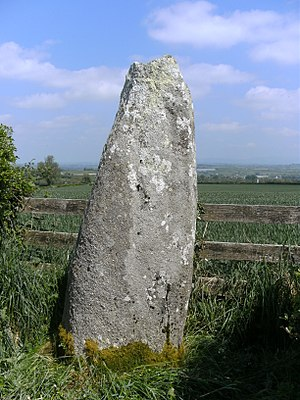 Mullaghmast - Standing stone on Mullaghmast