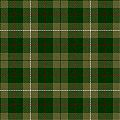 MacKinnon Hunting tartan (Lyon Court).jpg
