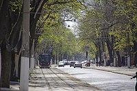 Maly Fontan, Odessa, Odessa Oblast, Ukraine - panoramio (5).jpg