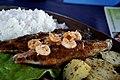 Maracajaú eating serra (frigate tuna) (8226073331).jpg