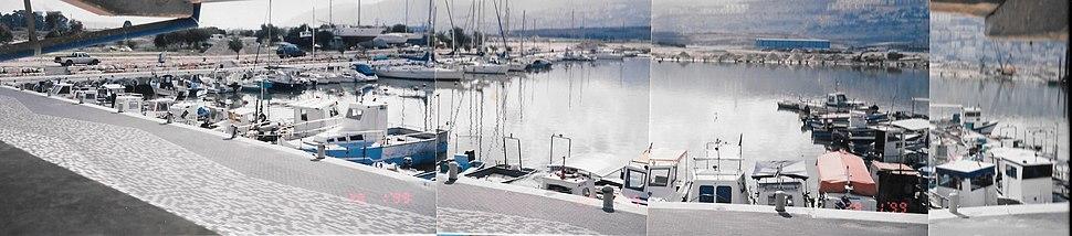 MarinaShavitl1999