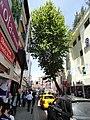 Market street, Istanbul, Turkey (9603513519).jpg