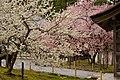 Matsushima (2455304341).jpg