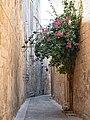 Mdina-Malta 5.jpg