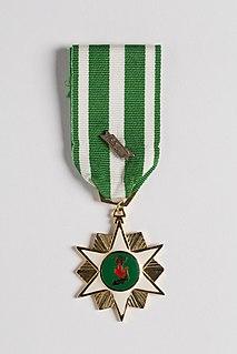 Vietnam Campaign Medal Award