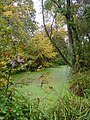 Mediaeval Fishponds - Park Farm, Thornbury - geograph.org.uk - 101813.jpg
