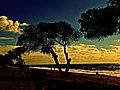 Memories - panoramio (7).jpg