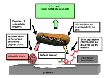 Biodegradable additives - Wikipedia