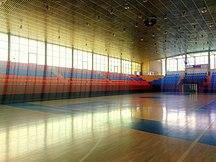 葉里溫-室内五人制足球-Mika Sports Arena (8)