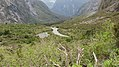 Milford Sound Hwy, South Island (483040) (9485110808).jpg