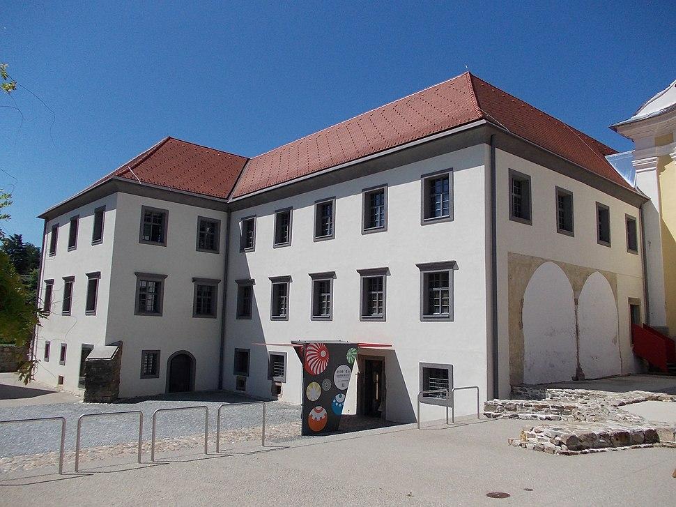 LG Maribor