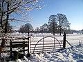Mongewell Park - geograph.org.uk - 1658696.jpg