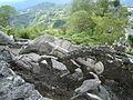 Monumento a los colonizadores de Manizales (toro trae la ciudad a cuesta).JPG