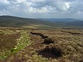 Moorland above Gilderdale - geograph.org.uk - 1303474.jpg