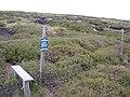 Moorland vegetation regeneration area, Birk Moss, Marsden - geograph.org.uk - 480811.jpg