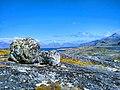 More random rocks Tasermiut Fjord Walk Nanortalik Greenland.jpg