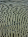 More sand patterns (8297614185).jpg