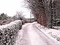 More snow - geograph.org.uk - 1144257.jpg