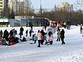 Moscow, Goliyanovo, Pond, Winter 05.jpg
