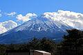 Mount Fuji from Michinoeki Narusawa.JPG