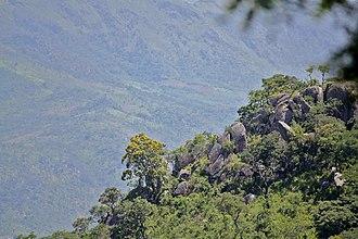Bvumba Mountains - Slopes of Mount Vumba in Mozambique
