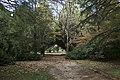 Mount Wilson NSW 2786, Australia - panoramio (17).jpg
