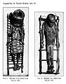 Mummy of a child from Uga Wellcome M0005255.jpg
