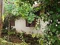 My house garden view - panoramio.jpg