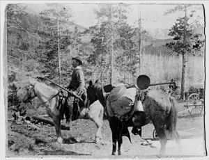 Gold mining in the United States - Swedish gold panners in 1860s Montana.