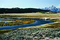 NRCSWY00001 - Wyoming (6867)(NRCS Photo Gallery).jpg
