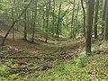 Nationalpark Hainich craulaer Kreuz 2020-06-03 29.jpg
