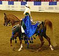 Native Arabian Costume Horse (2669568566).jpg