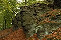 Nature reserve Vlčí důl in autumn 2014 (13).JPG