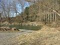 Naturlandschaft in den Illerauen - panoramio.jpg