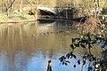 Neckar mit Einmündung der Murr 09.jpg