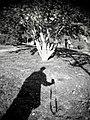 Negativeless Format - panoramio.jpg